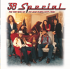 38 Special - The Very Best of the A&M Years (1977-1988)  artwork