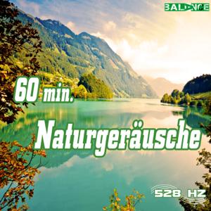 528 hz - 60 Minuten Naturgeräusche