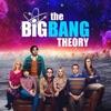 The Big Bang Theory, Season 11 wiki, synopsis