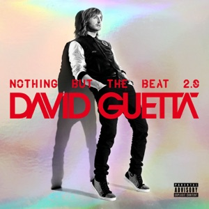 Nothing But the Beat 2.0 Mp3 Download