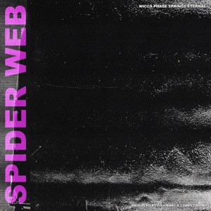 Spider Web - EP Mp3 Download