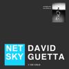 Ice Cold - Netsky & David Guetta mp3