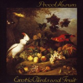 Procol Harum - The Idol