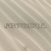A l'Ammoniaque - PNL