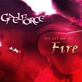 You Set Me on Fire (Unabridged) audiobook