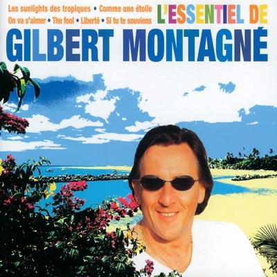L'essentiel de Gilbert Montagné - Gilbert Montagné