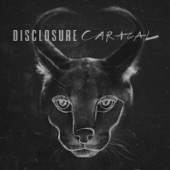 Disclosure - Hourglass (feat. LION BABE)