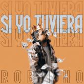 Si Yo Tuviera - Robinho