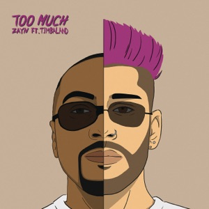 Too Much (feat. Timbaland) - Single Mp3 Download