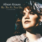 Alison Krauss & Union Station - Teardrops Will Kiss the Morning Dew