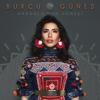 Burcu Güneş - Anadolu'nun Güneşi artwork