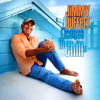 Jimmy Buffett - License to Chill  artwork