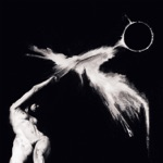 Dedekind Cut - MMXIX