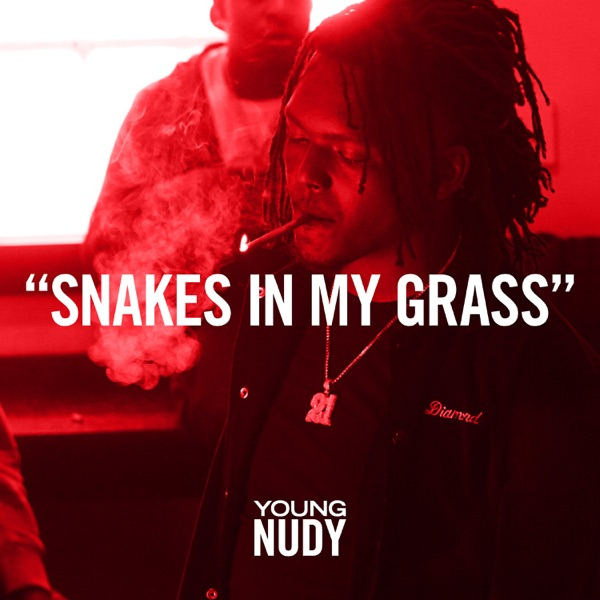 Snakes In My Grass - Single
