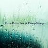 Pure Rain For a Deep Sleep