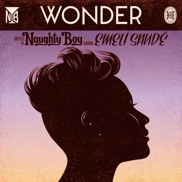 Naughty Boy - Wonder (feat. Emeli Sandé)