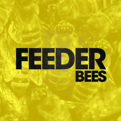 Bees (Alt Mix) - Single - Feeder