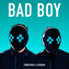 Tungevaag & Raaban - Bad Boy (feat. Luana Kiara) artwork