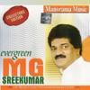 Evergreen M G Sreekumar
