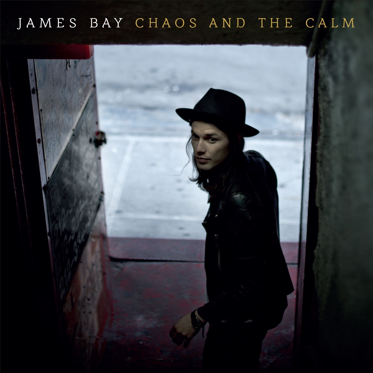 Chaos and the Calm Deluxe Edition James Bay CD cover