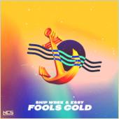 Fools Gold - Ship Wrek & Essy