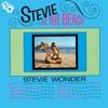 Stevie at the Beach