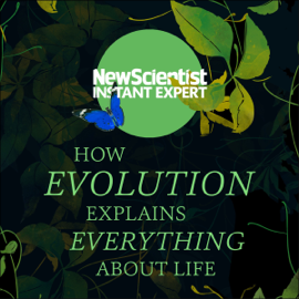 How Evolution Explains Everything About Life: From Darwin's Brilliant Idea to Today's Epic Theory (Unabridged) audiobook