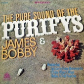 The Pure Sound of the Purifys