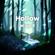 Hollow - Wisp X