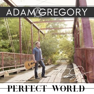 Perfect World - Adam Gregory