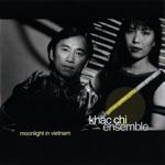 The Khac Chi Ensemble - T'rung Stream