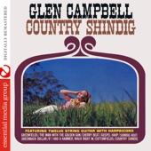 Glen Campbell - Shindig Hoot
