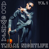 Tribal Nightlife, Vol. 1 - Ado Gwanja