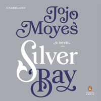 Silver Bay: A Novel (Unabridged)