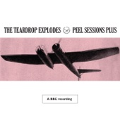 The Teardrop Explodes - The Poppies In the Field