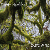 Pure Wind