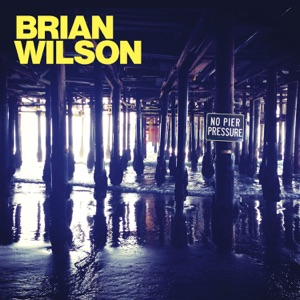 Brian Wilson - Saturday Night feat. Nate Ruess