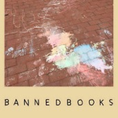Banned Books - Armor