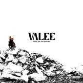 Valee - Juice & Gin