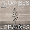 Calvin Harris, Sam Smith - Promises (Mousse T.'s Extended Disco Shizzle Remix) grafismos