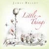 James Bright - Twilight artwork