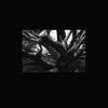 Şeb-i Yelda - EP - R.A.N.