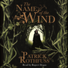 Patrick Rothfuss - The Name of the Wind artwork