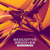 You Drive Me Crazy (DJ Kharitonov Remix) - Raf Marchesini & DJ Favorite