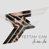Fettah Can - Aradığım Aşk artwork