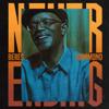 Beres Hammond - Never Ending artwork