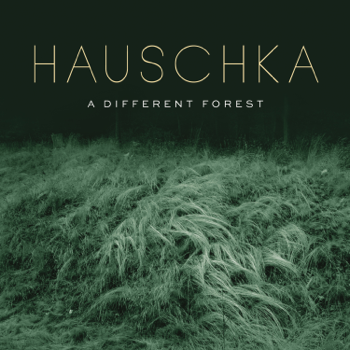 Hauschka A Different Forest music review