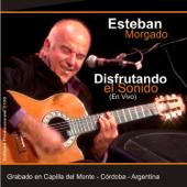 Libertango (En Vivo) - Esteban Morgado
