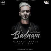 Badnam (with DJ Flow)