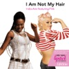 I Am Not My Hair (Featuring P!nk) - Single, India.Arie